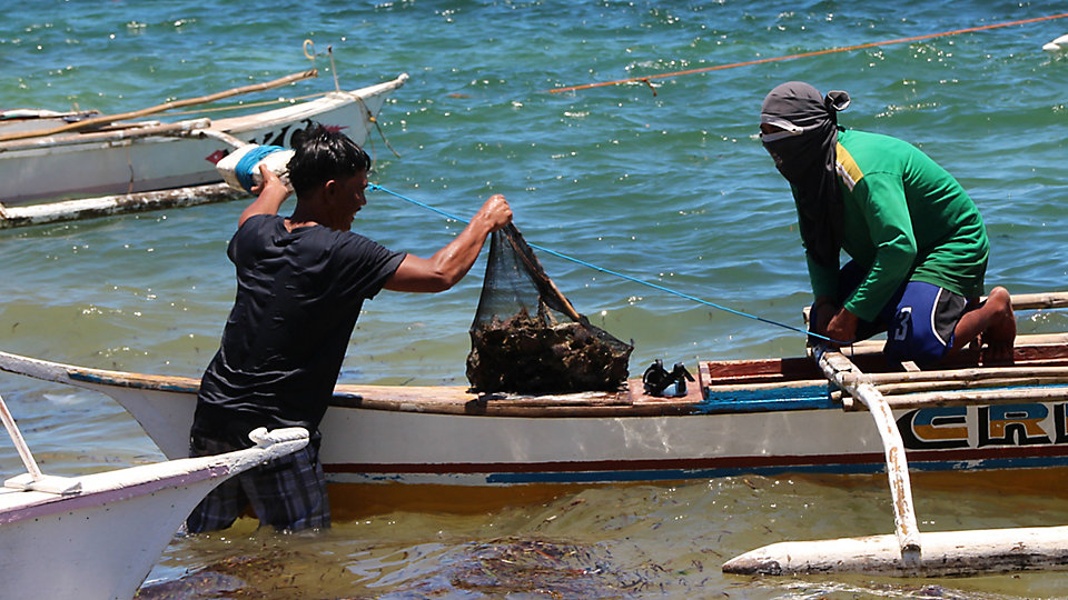 For many living in coastal and lakeside communities in developing countries, fishing, seaweed farming, and small-scale agriculture are the only ways to bring home food for the day.