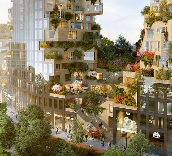Ein grünes Valley in Amsterdam