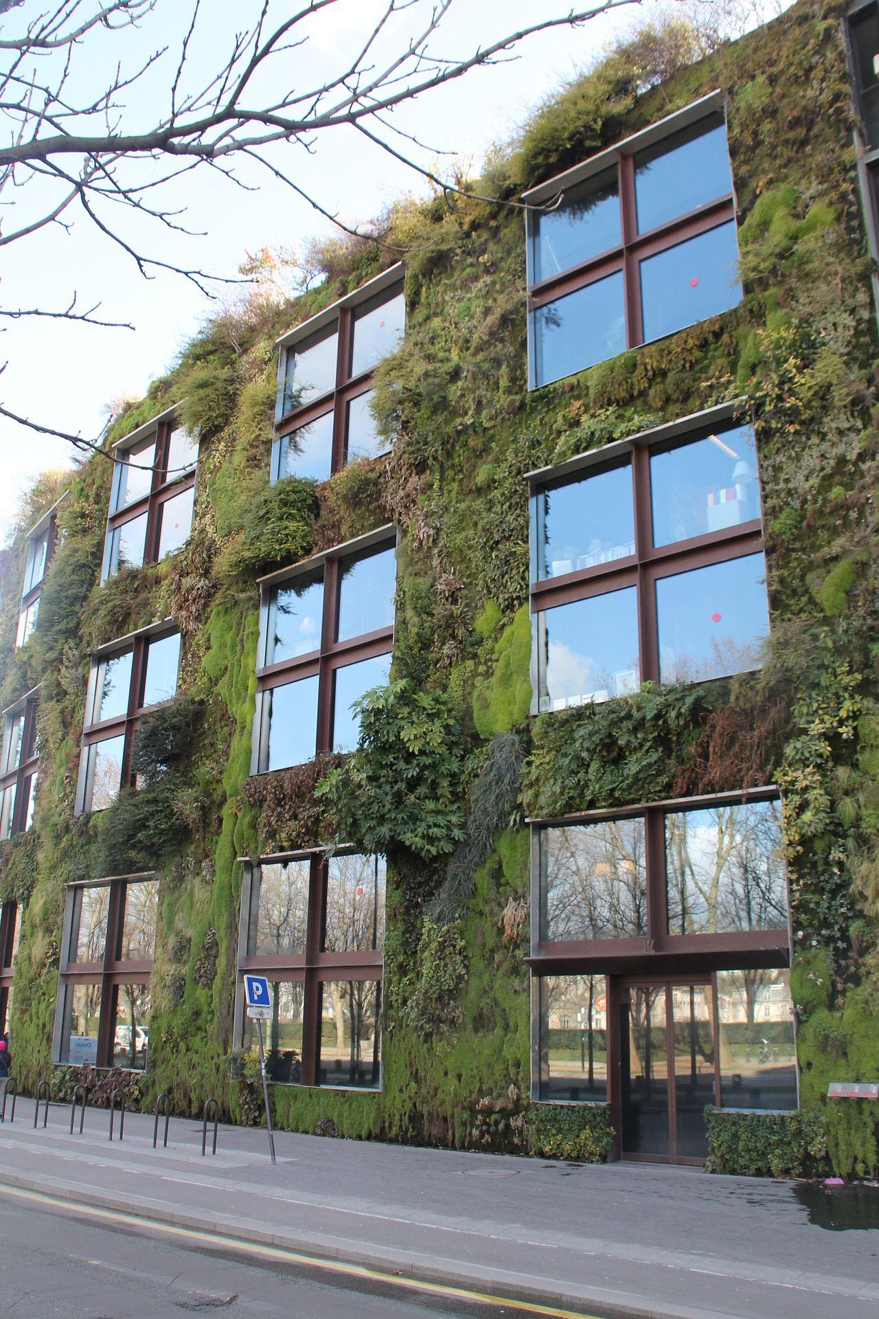 Green facades and vertical gardens improve the air quality in paris urban gardens
