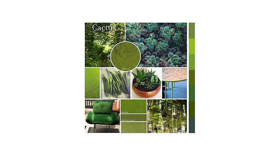 Colour of the Month July - Cactus