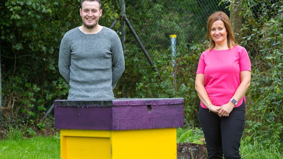 Bee-keeping in Craigavon