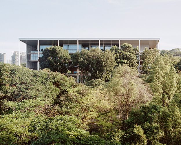 Carbon Neutral Floors™ in Singapore's First New-Build Net ... on environment house plans, global house plans, low maintenance house plans, secure house plans, software house plans, sustainability house plans, treehugger house plans,