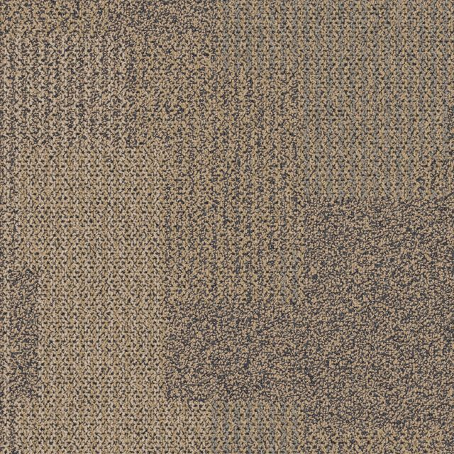 Entropy Summary Commercial Carpet Tile Interface