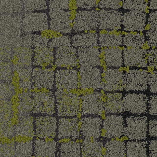 Moss In Stone Summary Commercial Carpet Tile Interface