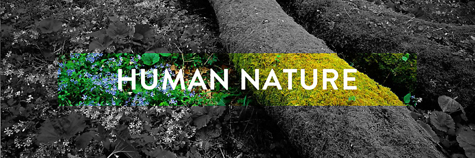Human Nature About Interface